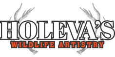 retina-holevas-wildlife-artistry
